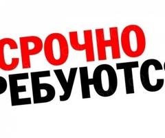 ХАУСМЕН С ОПЫТОМ РАБОТЫ В ОТЕЛЯХ!