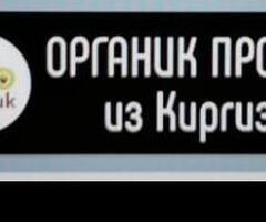 КУРУТ, ШЕРБЕТ, ЖАЛАЛ-АБАД №27