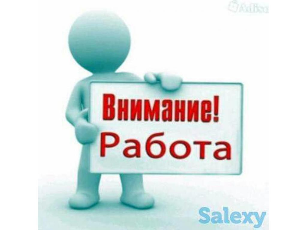 Комплектовщик ТСД - 1