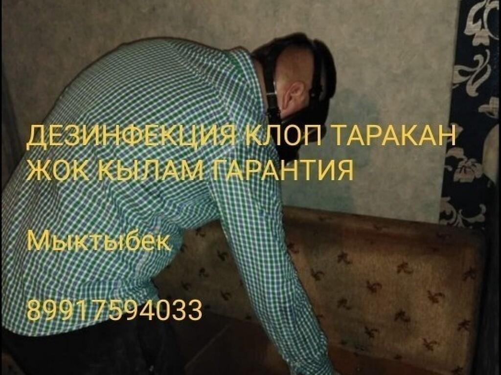 дезинфекция хлоп таракан - 3